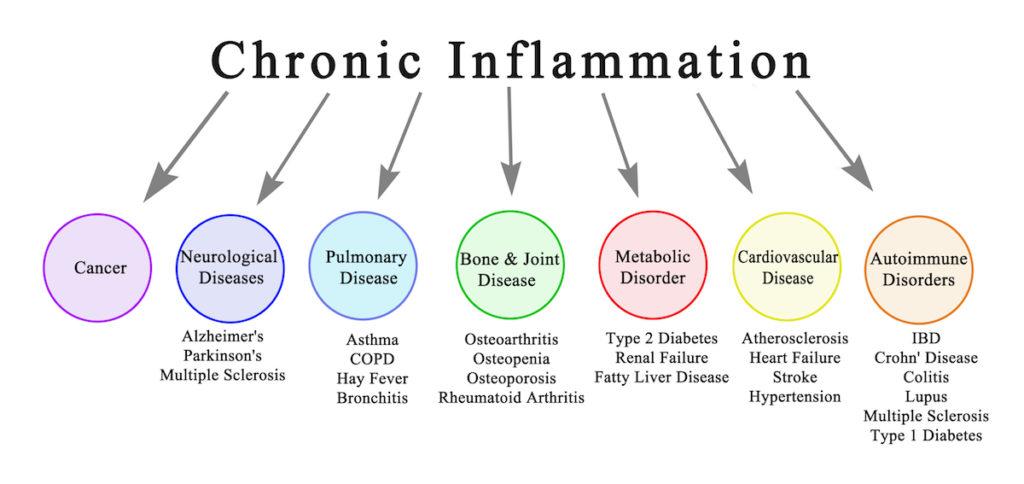 sugar causes Chronic inflammation