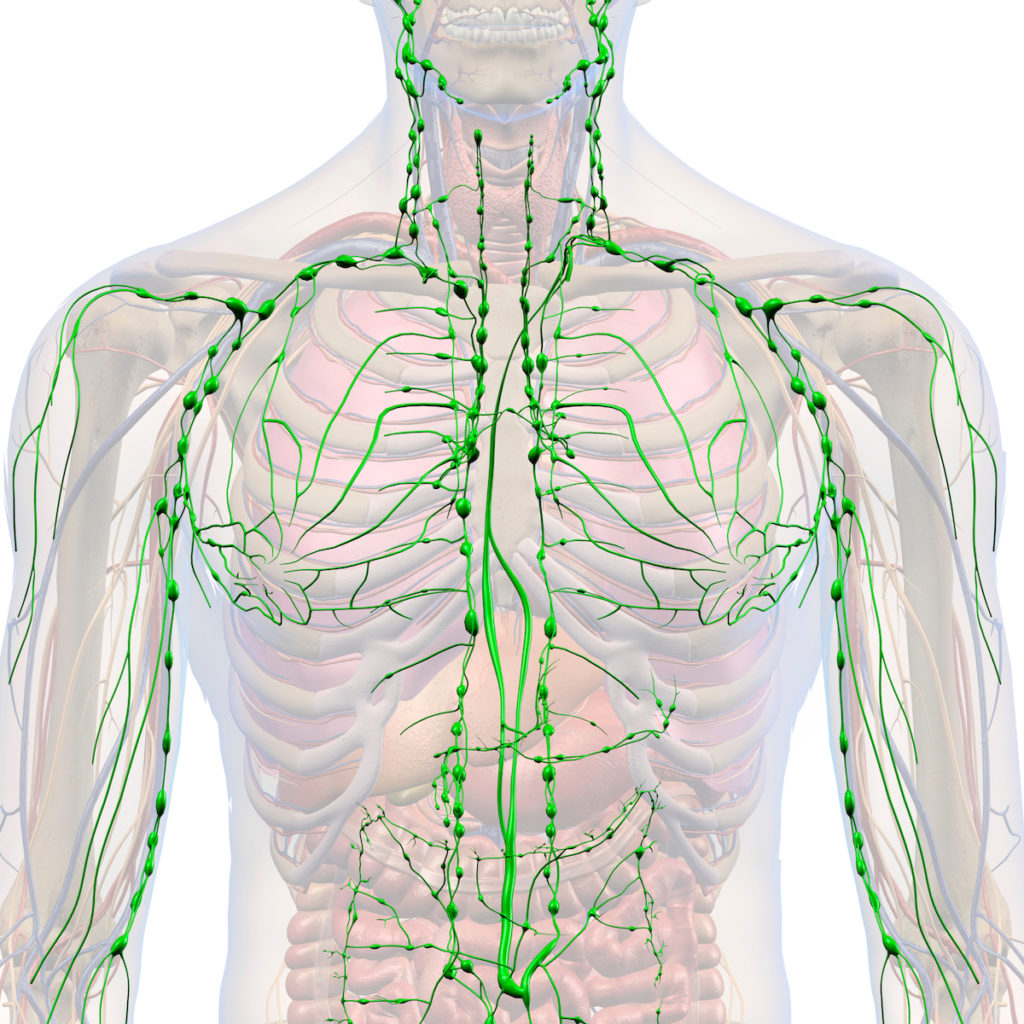 lymphatic drainage massage Chicago